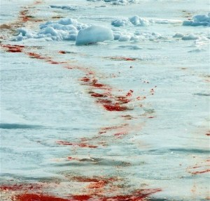 blood on ice